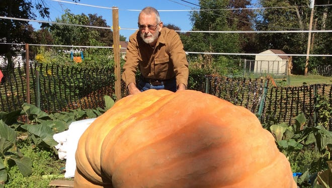 Tim Finn, of Webster, raised a 1,434-pound pumpkin this summer, which earned a top-10 prize at an October weigh-off.