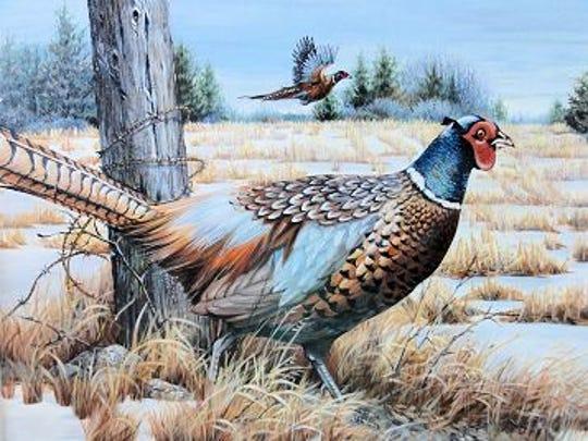20140729_pheasant.jpg