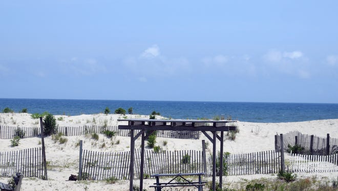A view of the outdoor movie theater and bone yard at Assateague Island State Park. A view of the outdoor movie theater and bone yard at Assateague Island State Park in Maryland, Thursday, July 30.