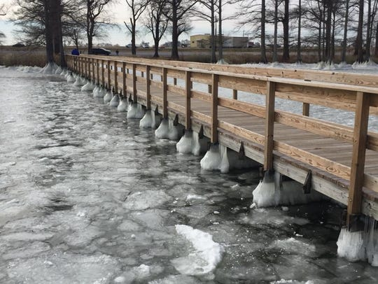 Water froze around the bottom of the boardwalks and