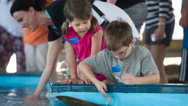 The Florida Oceanographic Coastal Center has two summer camps in July.