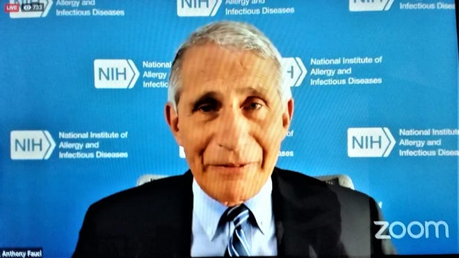Dr. Anthony Fauci during Friday's Zoom conversation.