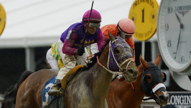 Race 1 winner Homeboykris (3) collapsed and died following the post race winner's circle celebration at the Preakness Stakes.