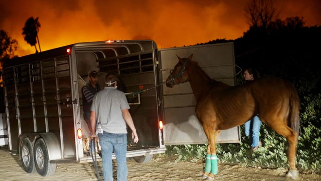 Volunteers rescue horses at a stable during the Lilac fire in Bonsall, California on December 7, 2017. Several horses have been killed in the blaze.