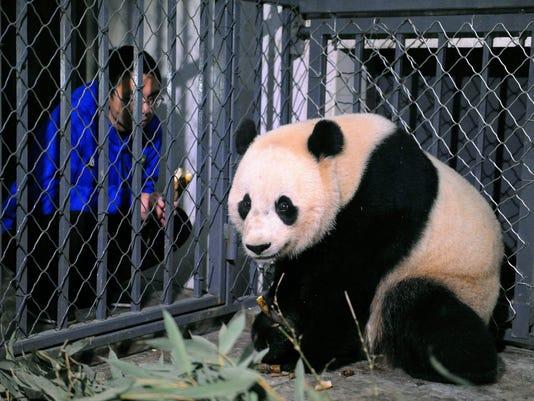 AP CHINA US PANDA ARRIVAL I CHN