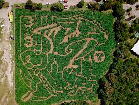 Predators Corn Maze Aerial