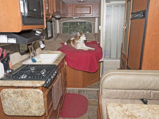 Sage enjoys a relaxing morning on the bed inside the RV.
