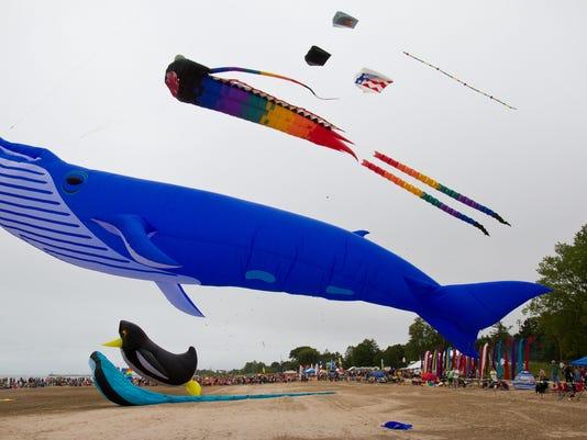 kite whale.jpg