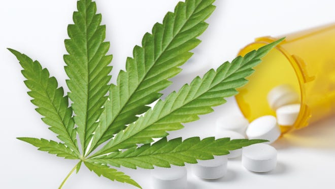 States that decriminalized medical marijuana saw nearly a 25 percent decline in overdose deaths