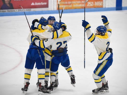 St. Cloud Cathdral players celebrate after a goal during the first period of the Saturday, Feb. 24, Section 6A Hockey game at the MAC in St. Cloud.