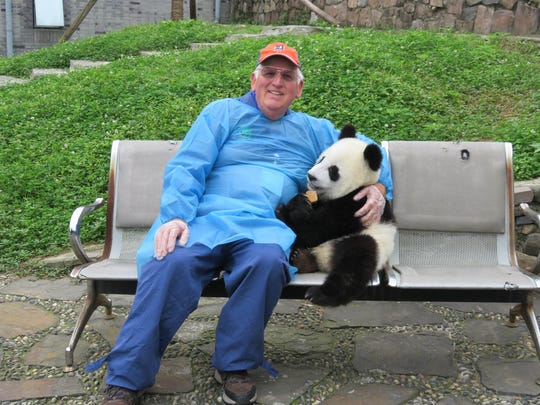 Marlene Bankwitz photographs her husband Keith Bankwitz, both from Dearborn, at the Panda Infirmary near Chengdu, China in October 2015. He volunteered to be a Panda Keeper for a Day.