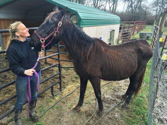 Trainer Alisha Rupp walks horse Whinny at Volunteer