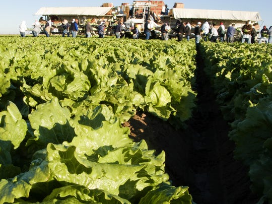The Yuma Fresh Vegetable Association opposes House