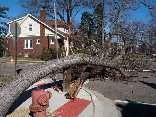 Storm Damage , Ferndale Michigan.