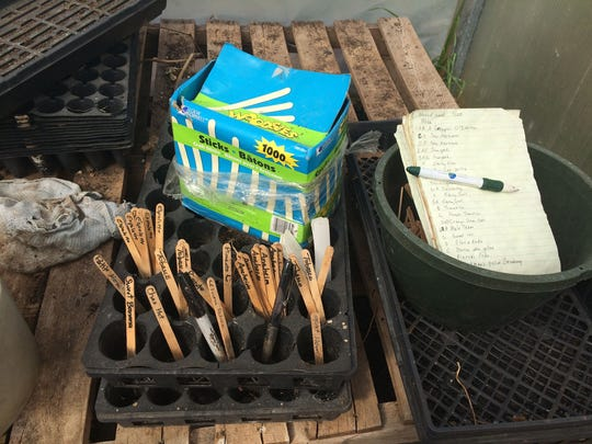 Rodger Winn and his wife Karen have a system of tracking the seeds that they plant that involves making detailed lists and marking trays with labeled popscicle sticks.