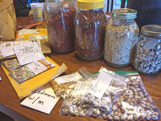 Rodger Winn saves heirloom vegetable seeds from plants that he has grown in Mason jars. As a respected grower of heirloom vegetables and flowers, Winn recieves packages from seed catalog companies who pay him to grow plants to fullfil the demand for seed.