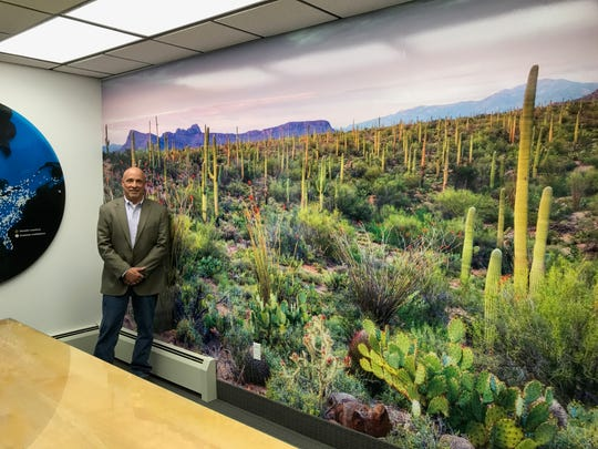 Mark Laniak, president and owner of Excelsus Soltuions standing in front of a newly installed wall mural.