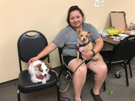 """Martiza Miranda, 26, with her dogs Wesley and Sophia at the Marin Center evacuation space in San Rafael, Calif. on Monday, Oct. 10. """"They keep me calm,"""" she said as she waited to find out if the apartment she shares with her parents survived the fires."""