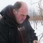 Dave Stamp, vineyard manager at Lakewood Vineyards north of Watkins Glen, examines a grapevine for damage in February.