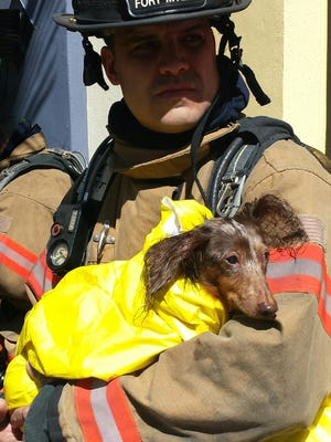 Jorge Perez, Fort Myers Fire Department's 2014 firefighter of the year, helped rescued a dog from a fire in downtown Fort Myers on Sunday afternoon.