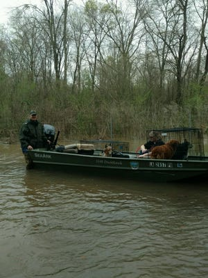 LDWF enforcement agent Troy Parker rescues a woman and her pets from south Bossier Parish near Poole Road.