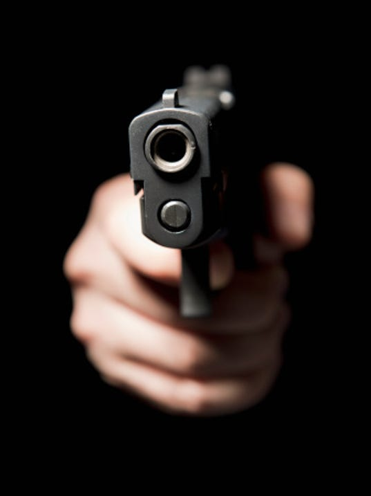 Michigan man accidentally shoots self in hand, kills dog