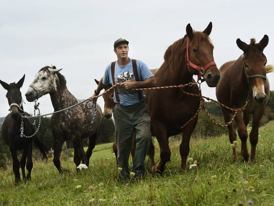 Horse Powered Farming_Atki.jpg