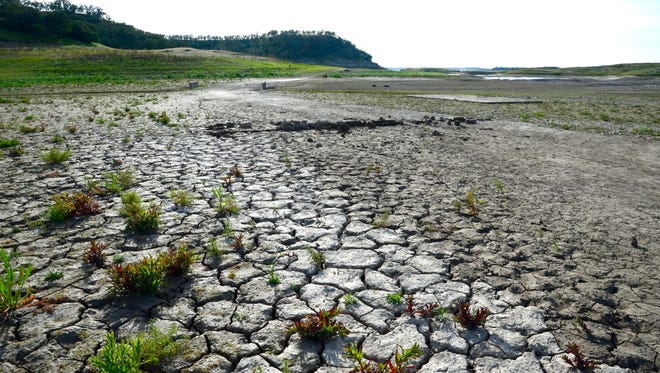 Plants grow among the cracked mud at the bottom of Camanche Reservoir in California, USA, 09 April 2015. The reservoir is down to 27 percent of its normal capacity. California governor Jerry Brown ordered the state's first-ever mandatory water cuts on 01 April, in the fourth year of a devastating drought that has dried up wells, forced mandatory rationing and jeopardized crops in one of the largest agricultural producing regions in the world.