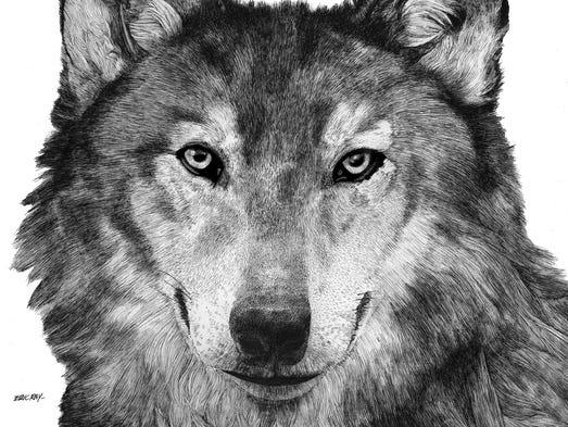 """""""Wolf Portrait"""""""