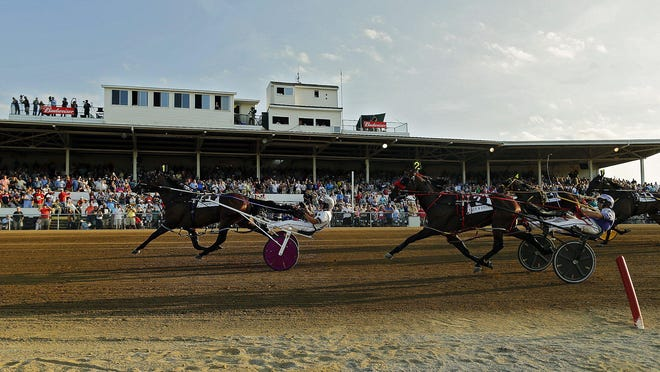 Driver Brian Sears and Southwind Ozzi won the 74th Little Brown Jug last September.