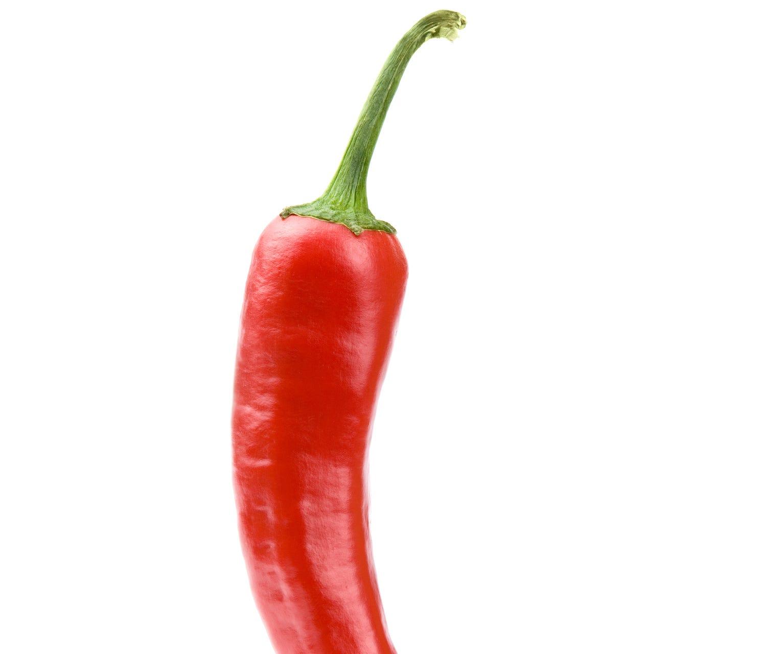 Hot chili pepper on white