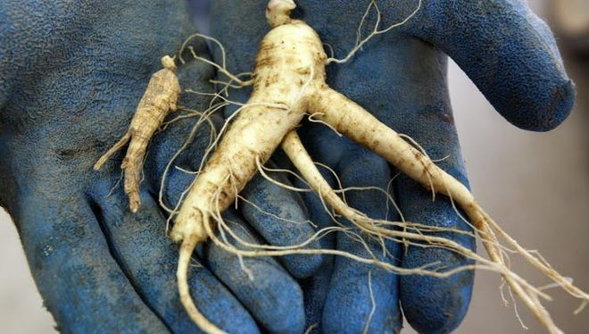 Ginseng is a major export from Wisconsin, particularly to China.