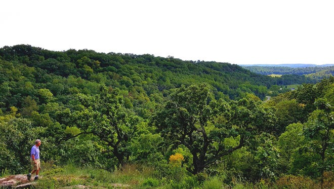 Dane County's Morton Forest offers stunning views of the Driftless Region from a handful of overlooks.