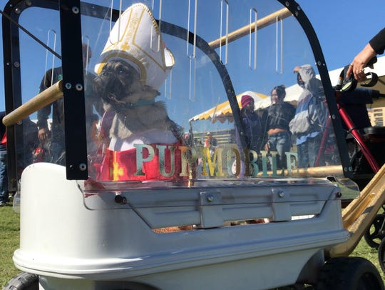 """Biggie Smalls dresses up as the Pope in his """"pup mobile"""""""
