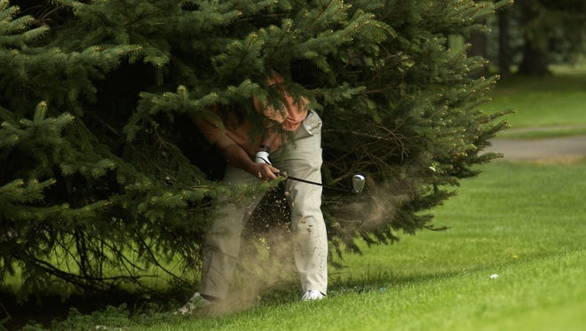 A local golfer punches out from one of those pine trees that gave Shadow Pines, the course in Penfield that is closing, in this 2006 file photo.
