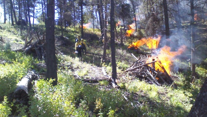Prescribed burns are used by many agencies to reduce fuel for wildfire and to dispose of previously cut piles of forest slash.
