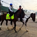 Danzig Moon posted a bullet five-furlong workout Saturday at Churchill Downs.