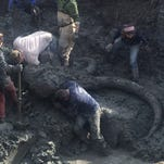 The site of the discovery of a woolly mammoth skeleton in Chelsea on Friday.