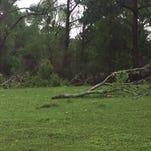 Tornado damage on Talowah Road in Purvis.