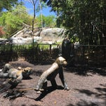 San Diego Zoo: 100 things you need to know