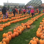 39 things to do in Wausau this fall