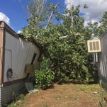 Storm uproots tree and pushes it onto home
