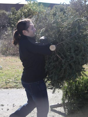 To recyle your Christmas tree, check whether your municipality or local Boy Scout troop offers a post-Christmas pickup service.