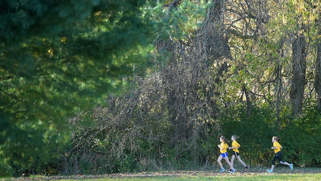 Runners pass dead trees that were part of a Wood Weekend event in Glen Miller Park.