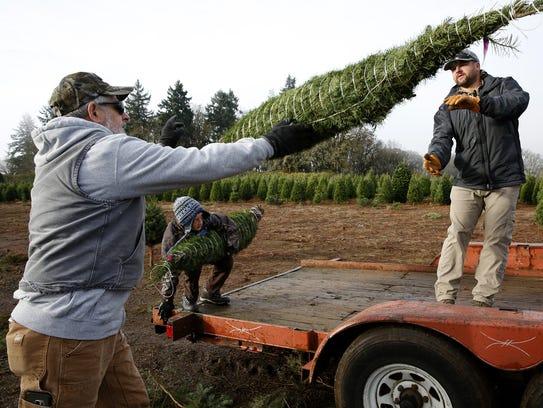 Robb Moser, left, tosses a Christmas tree to Matt Hitz