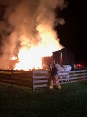A firefighter leads a cow away from a burning barn