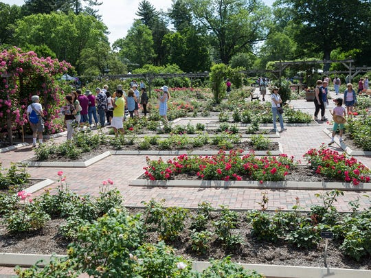 Colonial Park Gardens has trees and plants from all over the world.