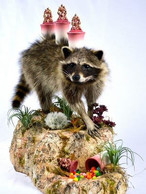 Raccoon Canister Set by Morgan and Eric Grasham