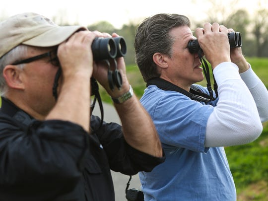 """Andrew Melnykovych, left, and James Wheat look through binoculars during a bird watching outing at Turkey Run Park in The Parklands. """"It's just fun being outdoors and there's the thrill of the chase,"""" Melnykovych said. """"It's the challege to see how many species I can see, or hear on a trip,"""" Wheat added. April 18, 2016"""
