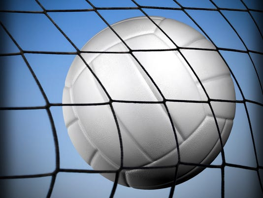 FMN Stock Image Volleyball